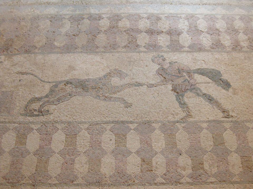 Paphos Mosaics